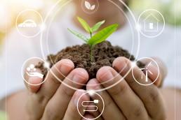 Educación ambiental en tiempos de cambio climático